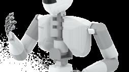 Humanoid Robot Platform