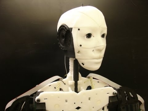 3D Printed Robot (DIY): InMoov