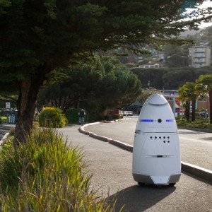 Security Robots patrolling streets
