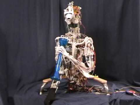 A very real humanoid robot