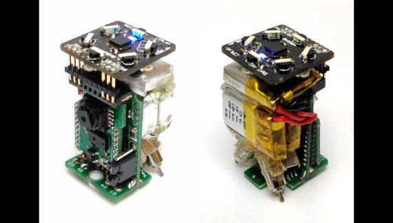 A Swarm Robotics Study: mROBerTO