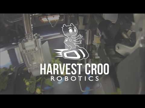 Strawberry Picking Robot by Harvest CROO Robotics