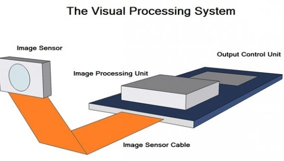 Visual Processing System